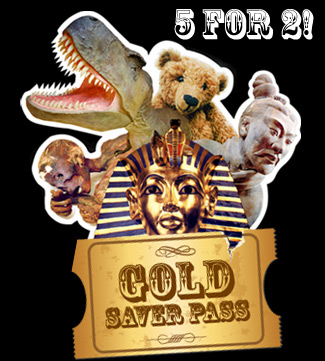 Gold Saver Pass
